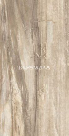 Керамогранит PETRIFIED TREE BEIGE TIGER CORE 938D1P LAPP