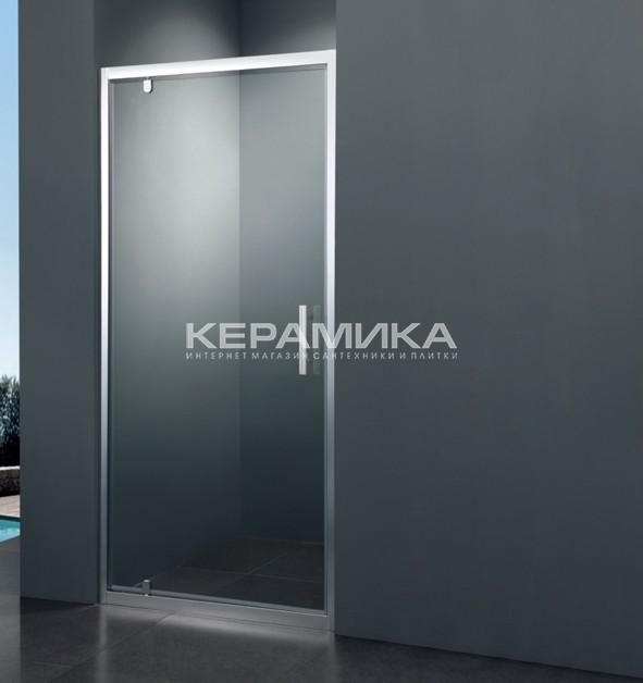 душевая дверь в нишу Frame Sdc1110 100х190 коллекция